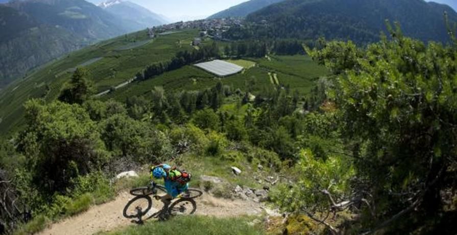 TrailTrophy Latsch in the Vinschgau Valley 25.05-27.05.2018
